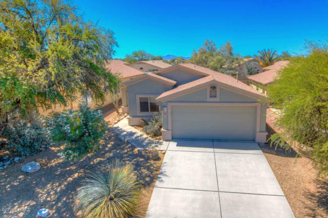 10446 E Chelan Street, Tucson, AZ 85747 (#21913907) :: Long Realty Company