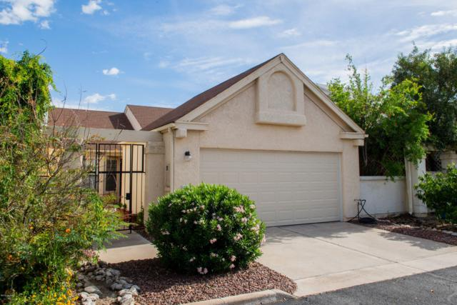 2955 W Katapa Trail, Tucson, AZ 85742 (MLS #21913949) :: The Property Partners at eXp Realty