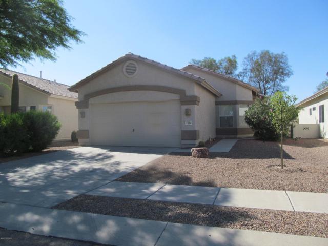 7304 W Clear Canyon Drive, Tucson, AZ 85743 (#21913978) :: Gateway Partners | Realty Executives Tucson Elite