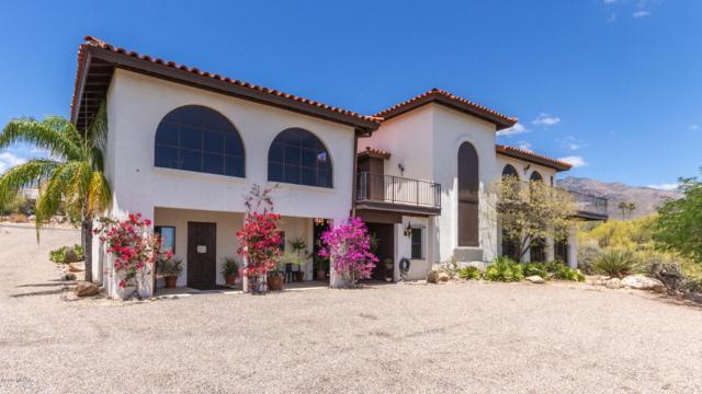 1440 E Thunderhead Drive, Tucson, AZ 85718 (#21913991) :: Long Realty Company
