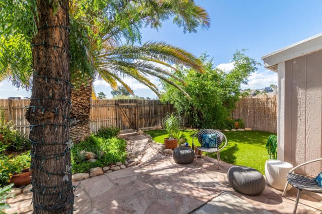 8637 N Siriga Way, Tucson, AZ 85742 (#21913999) :: Long Realty Company