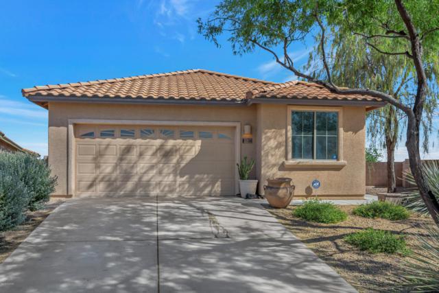 11704 W Stone Hearth Street, Marana, AZ 85658 (#21914021) :: Long Realty Company