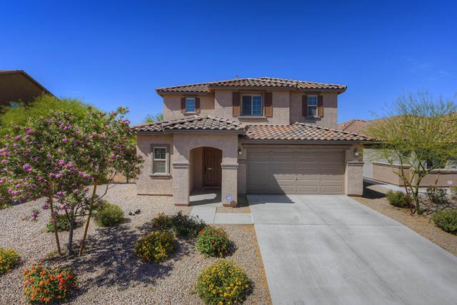12553 N School Day Drive, Marana, AZ 85653 (#21914027) :: Long Realty Company
