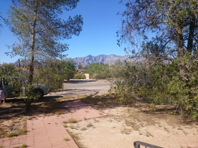 2004 E Kleindale Road, Tucson, AZ 85719 (#21914062) :: Long Realty Company