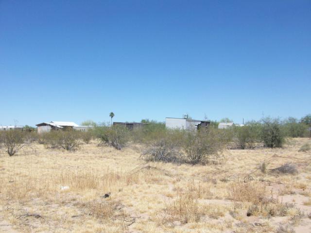 12820 N Derringer Road N #43, Marana, AZ 85653 (#21914130) :: Keller Williams