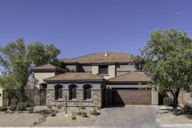 1195 E Stronghold Canyon Lane, Sahuarita, AZ 85629 (#21914142) :: Long Realty Company