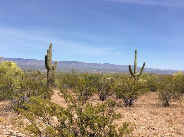 Peppersauce Mine Rd, San Manuel, AZ 85631 (#21914170) :: Gateway Partners | Realty Executives Tucson Elite