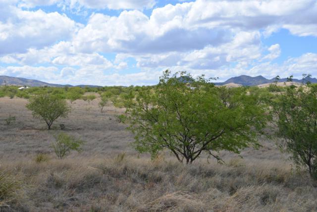 13750 E Beatty Ranch Road, Sonoita, AZ 85637 (#21914222) :: Long Realty - The Vallee Gold Team