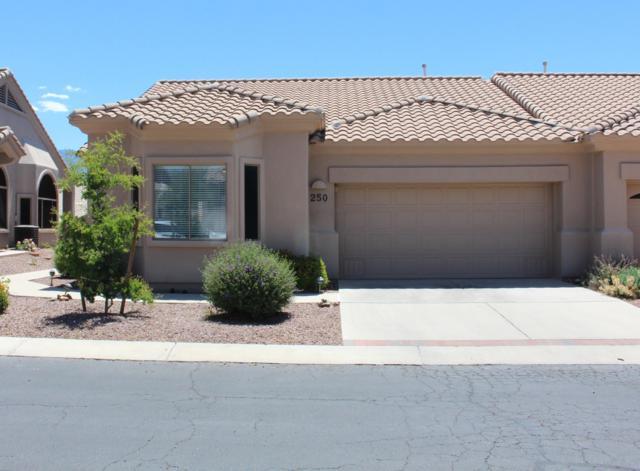 13401 N Rancho Vistoso Boulevard #250, Oro Valley, AZ 85755 (#21914389) :: Long Realty - The Vallee Gold Team