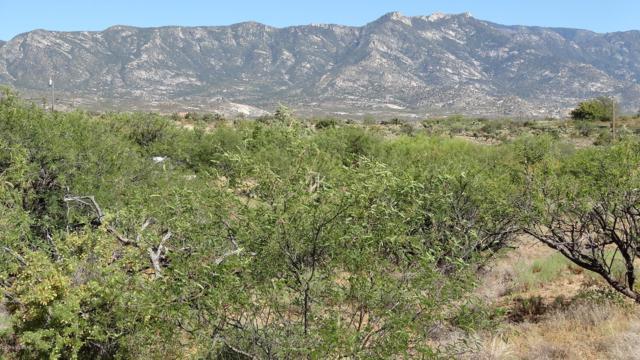 0000B E Horseshoe Bend Road, Tucson, AZ 85739 (#21914410) :: Long Realty Company
