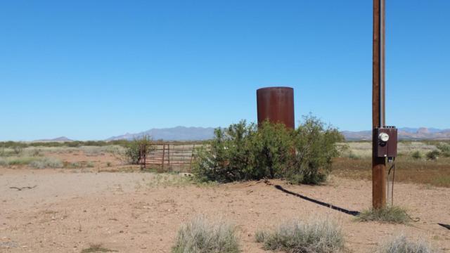 Hwy 191, Douglas, AZ 85607 (#21914431) :: Long Realty - The Vallee Gold Team
