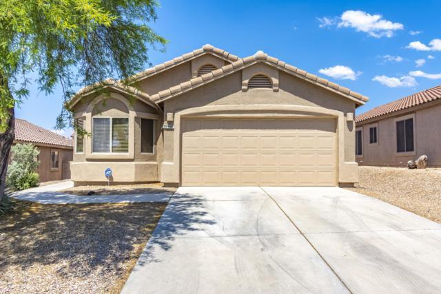 39407 Cinch Strap Place, Tucson, AZ 85739 (#21914742) :: Long Realty Company