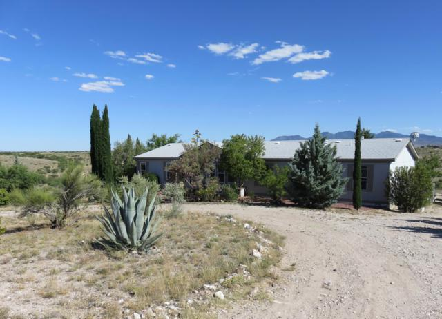 13489 S Bell Road, Benson, AZ 85602 (MLS #21914829) :: The Property Partners at eXp Realty