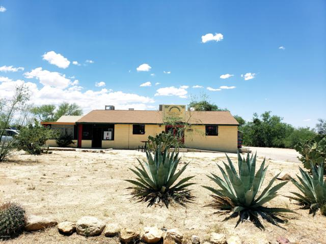 10390 S Sierrita Mountain Road, Tucson, AZ 85736 (#21914893) :: The Josh Berkley Team