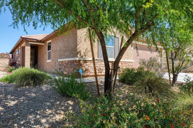 11582 W Foxberry Drive, Marana, AZ 85653 (#21914986) :: Long Realty Company