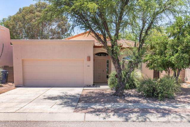 8852 E Desert Verbena Place, Tucson, AZ 85715 (#21915238) :: Long Realty - The Vallee Gold Team