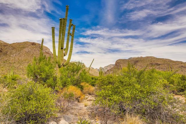 2131 E Desert Garden Drive #274, Tucson, AZ 85718 (#21915259) :: Long Realty - The Vallee Gold Team