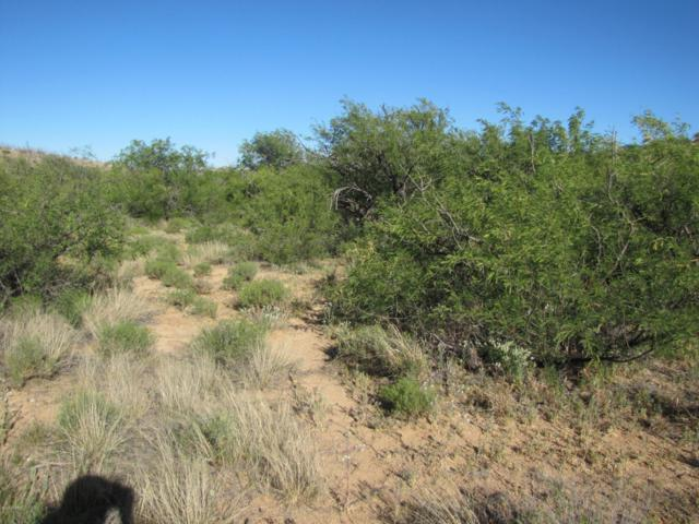TBD Sacred Rock Road, Dragoon, AZ 85609 (MLS #21915475) :: The Property Partners at eXp Realty