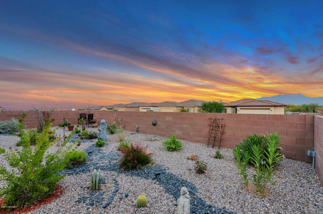 748 N Henrietta Scope Trail, Green Valley, AZ 85614 (#21915521) :: Long Realty Company