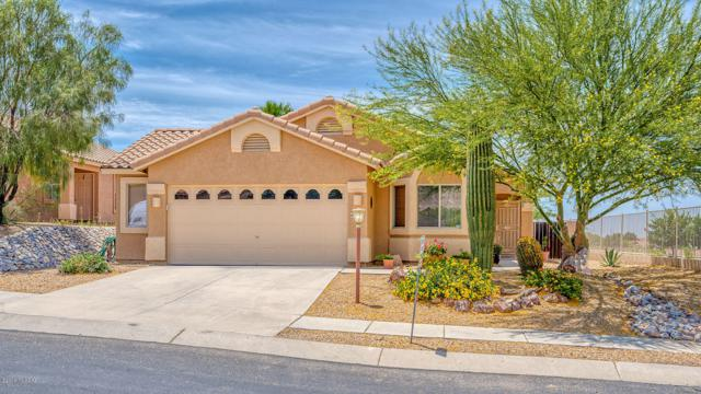 60309 Alpine Way, Tucson, AZ 85739 (#21915530) :: Long Realty Company