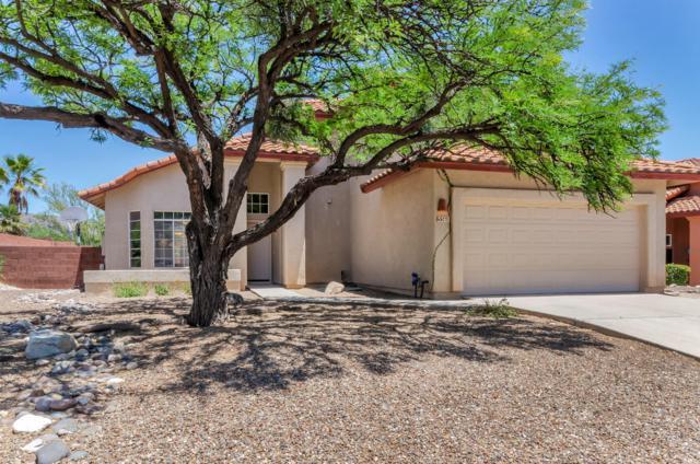 5560 N Barrasca Avenue, Tucson, AZ 85750 (#21915680) :: Long Realty - The Vallee Gold Team