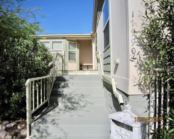 17990 W Lickskillet Lane, Marana, AZ 85653 (#21915795) :: Long Realty Company