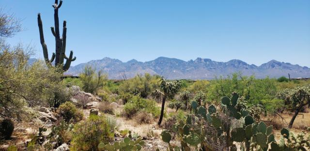 287 E Dusty View Drive #94, Oro Valley, AZ 85755 (#21915800) :: Long Realty - The Vallee Gold Team