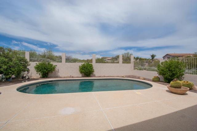 13791 N Bushwacker Place, Oro Valley, AZ 85755 (#21915950) :: Long Realty - The Vallee Gold Team