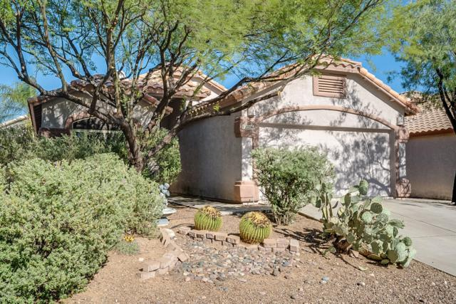 12206 N Kylene Canyon Drive, Oro Valley, AZ 85755 (#21916197) :: Long Realty Company