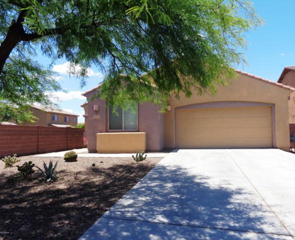 12963 N Sabal Palm Way, Marana, AZ 85653 (#21916212) :: Tucson Property Executives