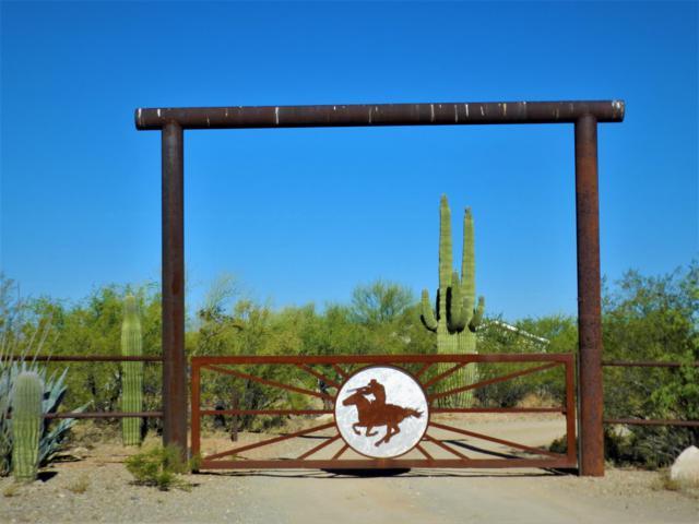 18050 S Desert Saguaro Shadow Place, Sahuarita, AZ 85629 (#21916243) :: The Local Real Estate Group | Realty Executives