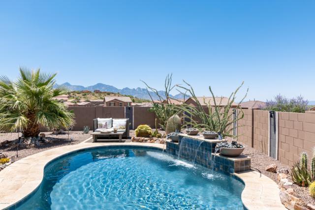 39176 S Quick Trot Drive, Tucson, AZ 85739 (#21916251) :: Luxury Group - Realty Executives Tucson Elite