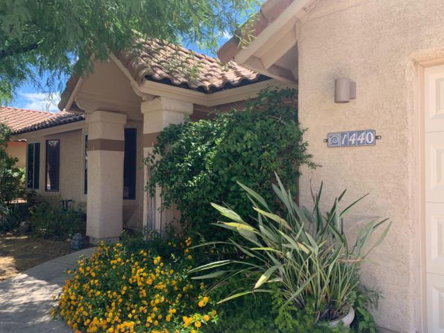 1440 E Desert Starling Lane, Tucson, AZ 85737 (#21916270) :: Luxury Group - Realty Executives Tucson Elite