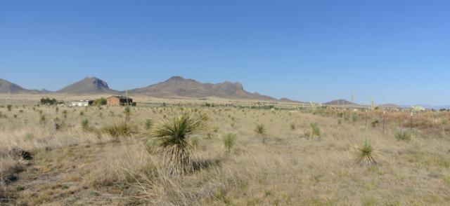 TBD Terra Cota Lane, Elgin, AZ 85611 (MLS #21916291) :: The Property Partners at eXp Realty