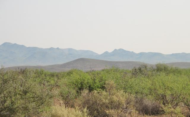 363 Acre E Rawhide Trail #77, Willcox, AZ 85643 (#21916299) :: Tucson Property Executives