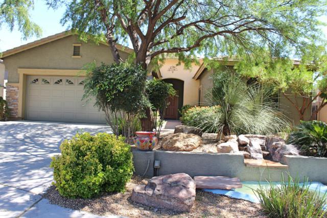 862 E Gunsight Mountain Place, Sahuarita, AZ 85629 (#21916304) :: The Local Real Estate Group | Realty Executives