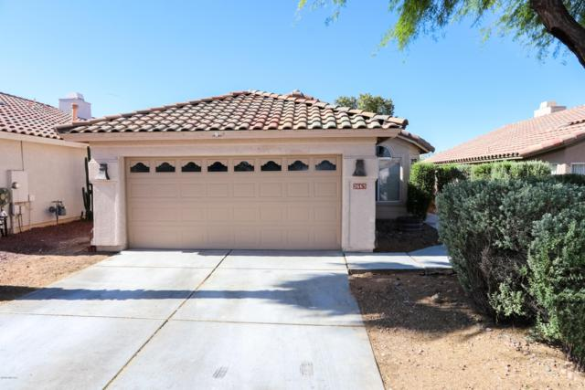 2663 W Catalina View Drive, Tucson, AZ 85742 (#21916329) :: Long Realty Company
