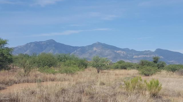 4978 S La Donna Lane Tbd, Sierra Vista, AZ 85650 (#21916347) :: The Josh Berkley Team