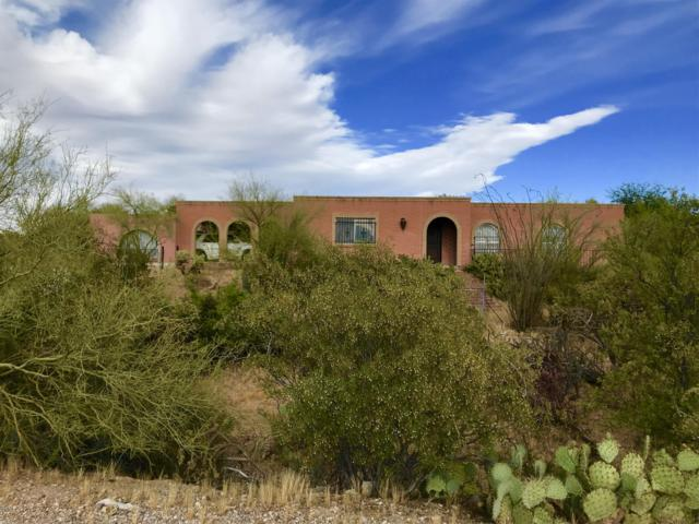2060 N Painted Hills Road, Tucson, AZ 85745 (#21916396) :: The Josh Berkley Team