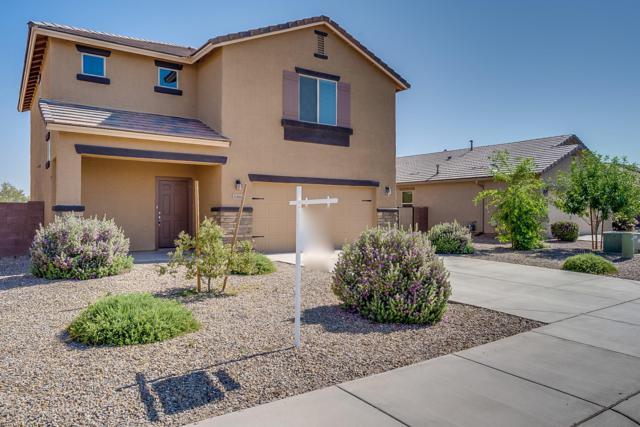 11564 W Fayes Glen Drive, Marana, AZ 85653 (#21916493) :: Keller Williams