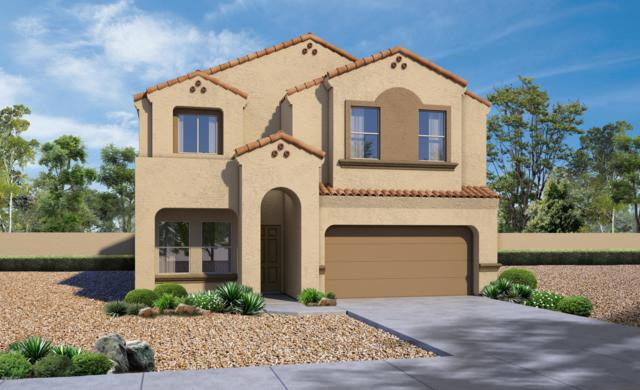 247 W Sg Posey Street, Vail, AZ 85641 (MLS #21916498) :: The Property Partners at eXp Realty
