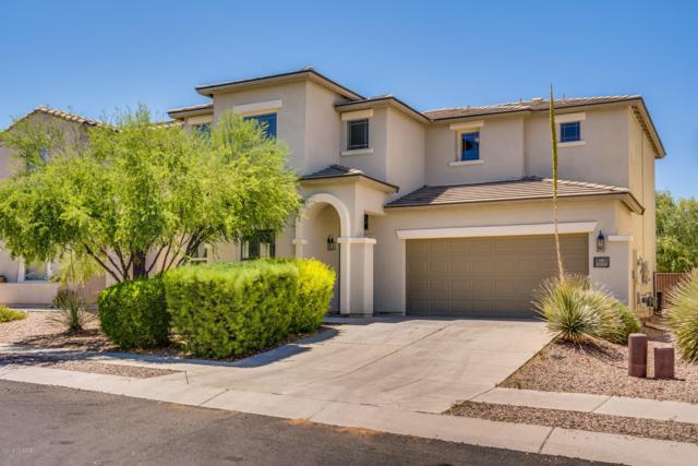 14168 S Avenida Zumba, Sahuarita, AZ 85629 (#21916569) :: Realty Executives Tucson Elite