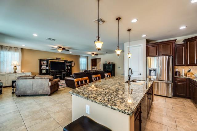 11044 N Delphinus Street, Oro Valley, AZ 85742 (#21916574) :: Realty Executives Tucson Elite