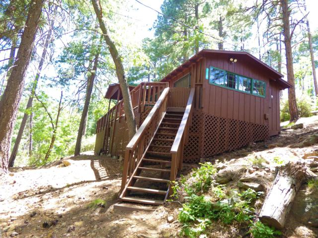 12033 N Soldiers Lake, Mt. Lemmon, AZ 85619 (#21916651) :: The Local Real Estate Group | Realty Executives