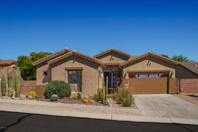 13154 N High Hawk Drive, Marana, AZ 85658 (#21916655) :: Long Realty - The Vallee Gold Team