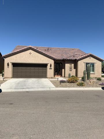 32782 S Hyrax Lane, Oracle, AZ 85623 (MLS #21916687) :: The Property Partners at eXp Realty