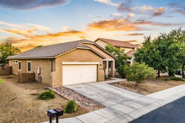 11309 W Harvester Drive, Marana, AZ 85653 (#21916770) :: Realty Executives Tucson Elite
