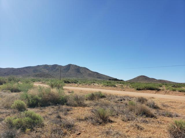 TBD E Page Ranch Road #49, Willcox, AZ 85643 (#21916829) :: Luxury Group - Realty Executives Tucson Elite