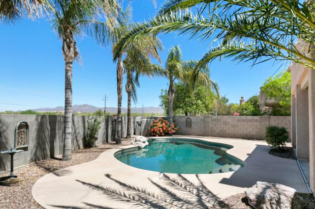 11281 N Chynna Rose Place, Tucson, AZ 85737 (#21916848) :: The Local Real Estate Group | Realty Executives