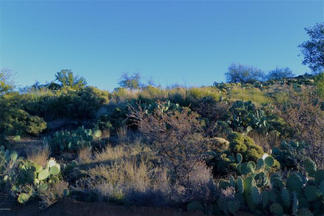 TBD N Alta Loma Drive, Oracle, AZ 85623 (#21916914) :: Luxury Group - Realty Executives Tucson Elite